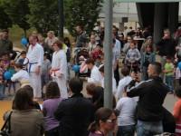 MonteLaa_Nachbarschaftstag-20120601_164352-3