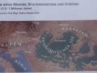 LaeerBergbauern-1-Wie_kommt_der_Lehm_auf_den_LaaerBerg-K3-20170606_183222