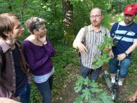 LaeerBergbauern-2-Landschaften_und_Vegetation_im_Wandel-20170616_183531