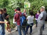 LaeerBergbauern-2-Landschaften_und_Vegetation_im_Wandel-20170616_184740