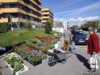 20120423_MonteLaa_Blumenmarkt-DSC03823
