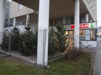 MonteLaa_Weihnachtsbaum-Verkauf-20121219_151027