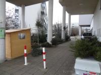 MonteLaa_Weihnachtsbaum-Verkauf-20121219_151043