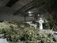 Ankerbrot-Aufruf_zur_Reduktion-20120706-DSC07725