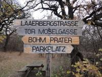 Laaer_Wald-20111206-DSC09199